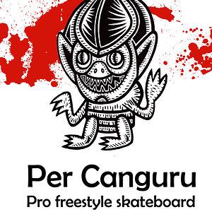 Profile picture for PerCanguru