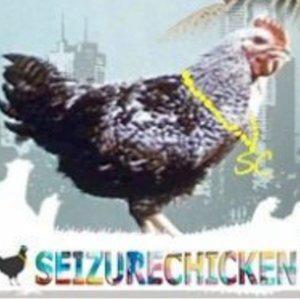 Profile picture for SeizureChicken