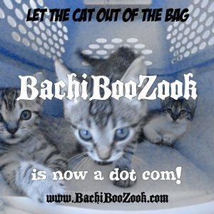 Profile picture for BachiBooZook