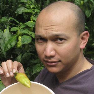 Profile picture for Pepe Flinco
