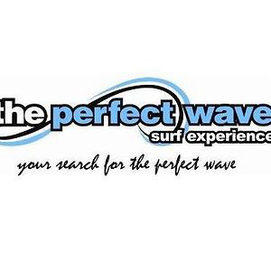 Profile picture for The Perfect Wave