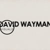 David Wayman Visuals