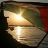 Vittorio Arrigoni (In Memory)