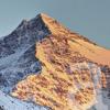 Alpinia, Bormio