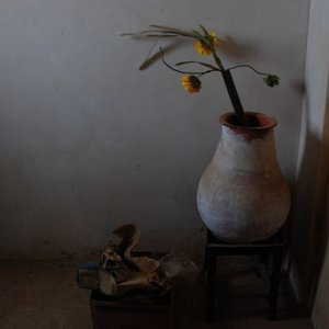 Profile picture for Ahmad El-Sanhouri