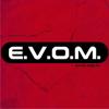 Blog EVOM