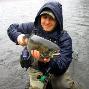 Profile picture for Northern Michigan Fly Fishing
