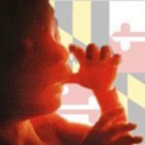 Profile picture for Maryland Coalition for Life