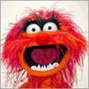 MuppetLovers