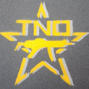 Profile picture for TNO Films
