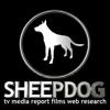 Sheepdog TV Films Report