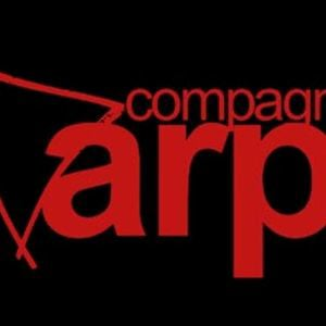 Profile picture for Compagnia dell'Arpa