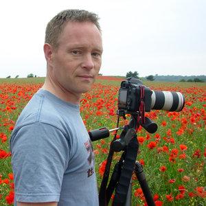 Profile picture for Paul Ward