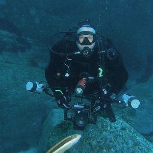 Profile picture for Matt Dowse