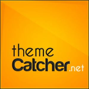 Profile picture for ThemeCatcher