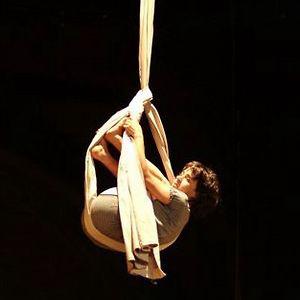 Profile picture for Sofia Figueiredo