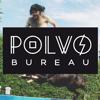 POLVO BUREAU