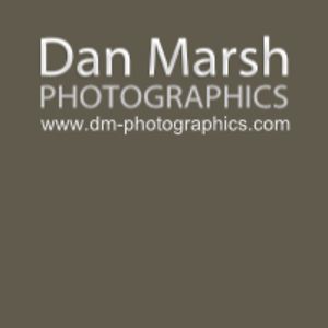 Profile picture for Dan Marsh