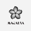 Macabra Productions