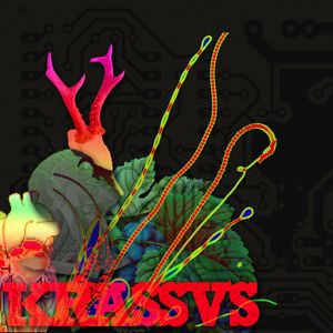 Profile picture for krassvs