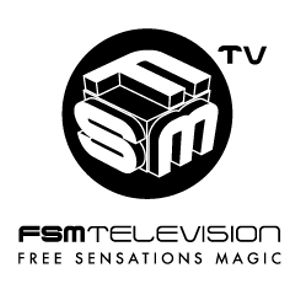 Profile picture for Fsm Group