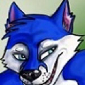 Profile picture for jc husky