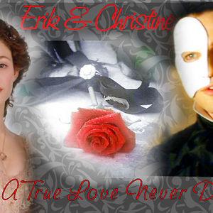 Profile picture for christine destler