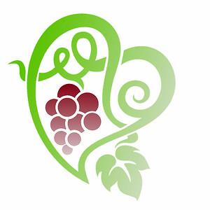 Profile picture for Portuguese Wine Experience