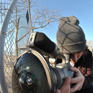 Profile picture for joe stazzone
