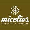 micelios proyectos culturales