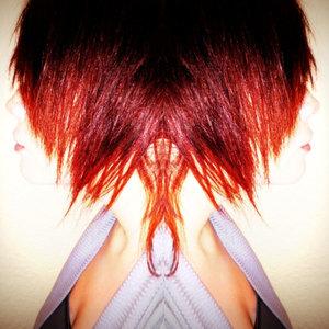 Profile picture for Nikki Perocier