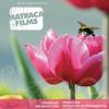 Matraca Films