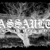 ASSAULT SKATEBOARDS