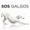 SOS Galgos