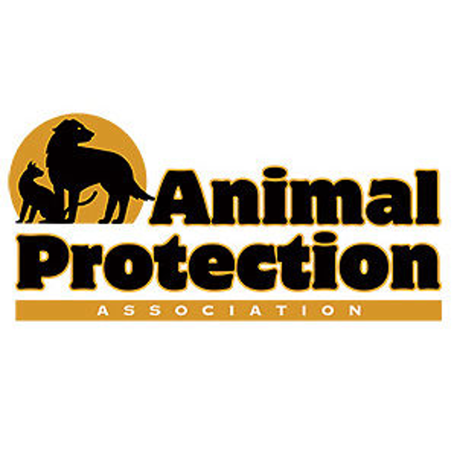 animal protection The animal protection and rescue league is an american grassroots animal rights organization based in california's san diego and orange counties animal protection.