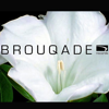 BROUQADE