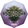 Octagon Octagon