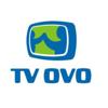 TV OVO
