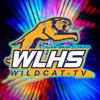 WLHS TV