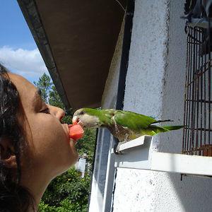 Profile picture for Manuela Alves