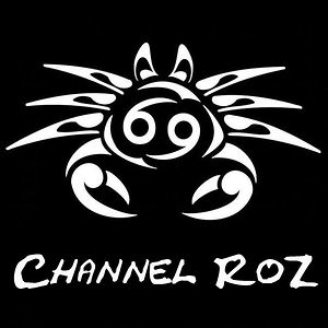 Profile picture for Channel RoZ