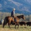cowboy Mike Foate