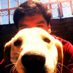 Profile picture for Diego Prado F.