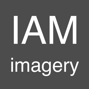 Profile picture for Ian Mosley