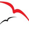 redbird media
