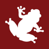 Red Frog Interactive
