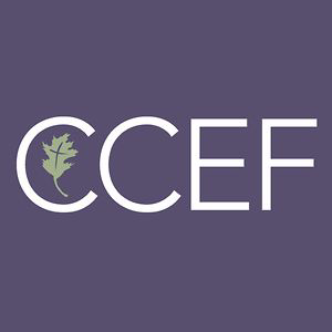 Image result for ccef
