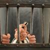 Patrick Raats Animation