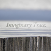Imaginary Trace
