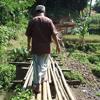 Green Islam in Indonesia